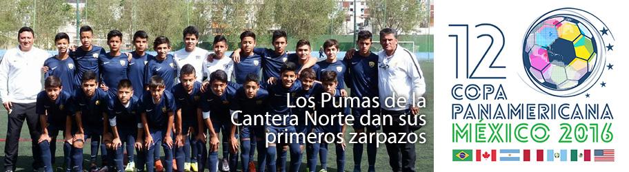 bannerCanteraZarpaso