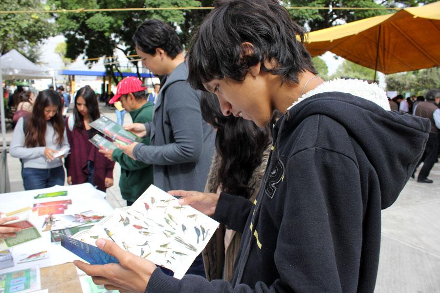"""XVI Festival Mundial de las Aves  y VIII edición de """"Alas Metropolitanas"""" en Iztacala"""