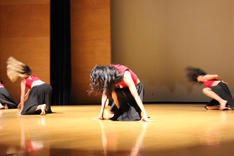 Día de la danza CCI-69